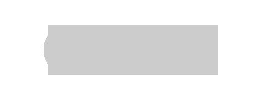 viralize logo